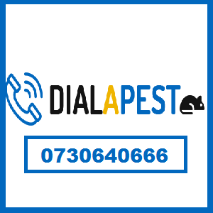 dialapest