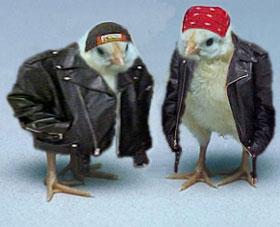 Biker Hen (OldBikerHen)