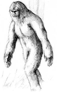 Wyldman (WyldmanPrime)
