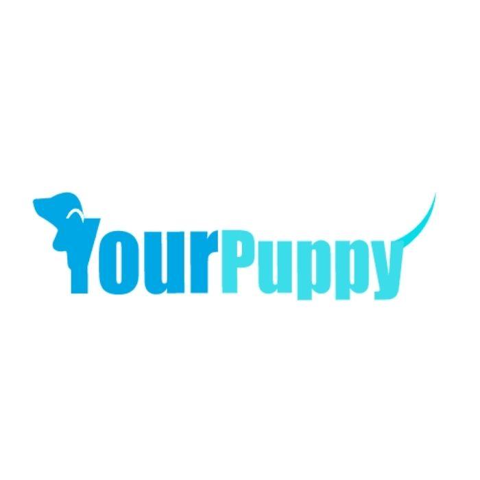 yourpuppyfl